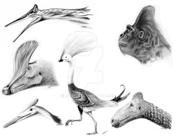 Strange Crests of Paleo by Qilong