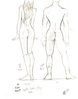 Body Sketch not so accurate by Asprine