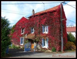 House Of Autumn by allym007
