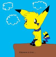 Pokemon Is love.... by TheCuriousFox