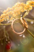 Parry Rings I by Freelana