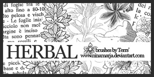 Herbal - brushes set 03 by Ninamarja
