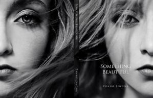 Something Beautiful Hardcover by zemotion