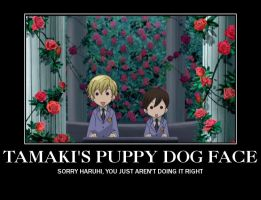 Tamaki and Haruhi Demotivational by Vcorb1