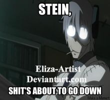 STEIN, SH#T'S ABOUT TO GO DOWN by Eliza-Artist