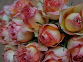 ROSES by BELLESYMPHORINE