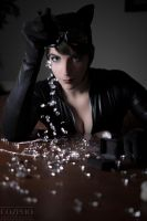 Catwoman: I like My Stones Precious by Requiem-Rain