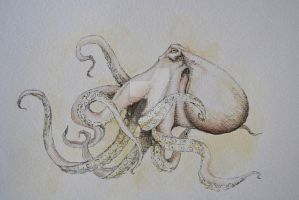 Octopus by Aratafinwe