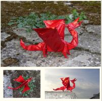 Gracie's Red Dragon by Figuer