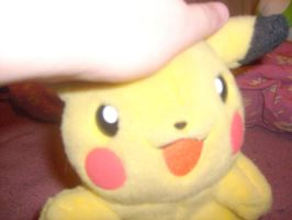 A pat for Pikachu by MarioBlade64