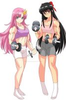 Lacus and Itiki working out colored by creationstar
