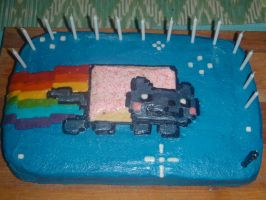 Nyan cat cake by Alontwig