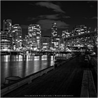 Night Vision II by Val-Faustino