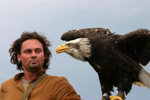 Bald eagle and falconer by marble911