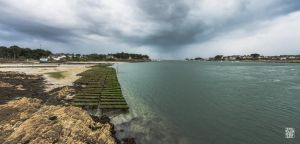Oysters park by sylvaincollet