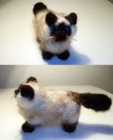 Himalayan Cat Commission by StCoraline