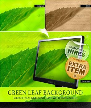 Green Leaf Background by boeenet