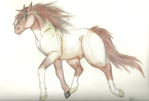 Padro ID 480- Alletier by ZeldaWolf7