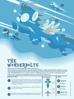 Infographic Wonderbolts by Samoht-Lion
