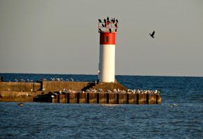 Lighthouse by Michies-Photographyy