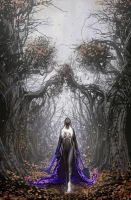 death vigil 8 cover- to all things there is an end by nebezial