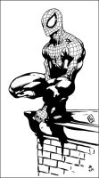Spidey By Komus by JDB-Inks