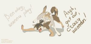 Wolfdog vs Wolf by Astarcis