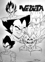 Vegeta Collage by gokujr96