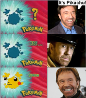 Chuck Norris is Always Right by Streambay