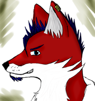 Fox Character by Dusk-Glider