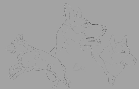 Gsd sketches by ReshiANW