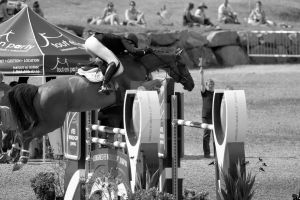 FEI WORLD CUP JUMPING 2015_BROMONT_19 by godefroy1096