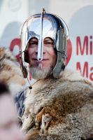 Viking 2012 stock 5 by Random-Acts-Stock