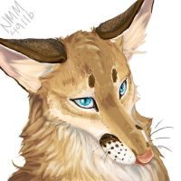 lineless Caracal-wolf 1 by SadWhiteRaven
