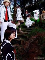Vampire Knight by Gust-james