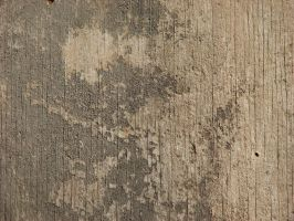 Wood 5 by CharadeTextures