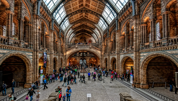 London - Natural History Museum by pingallery