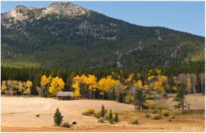 Cabin on the Bighorns by wyorev
