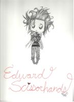 Edward Scissorhands [Thanks for 80 watchers!] by PeachyBunn