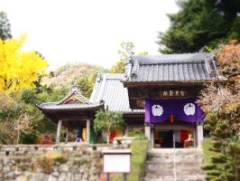 a shrine in autumn by yukino-k