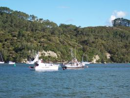 More from Whitianga 9 by OWTC-Stock