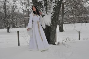 Snow queen 032 by elusiveelegance