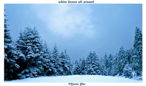 White Forest All Around by mariaper
