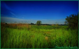 Hungarian landscapes.HDR-picture(photo series)27. by magyarilaszlo