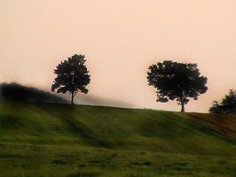 Two Tree Hill by mirrorimagestock