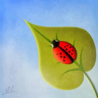 Lady bug by TheCoredump