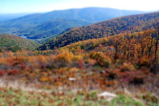 Virginia Valley in Autumn by olorinthewhite