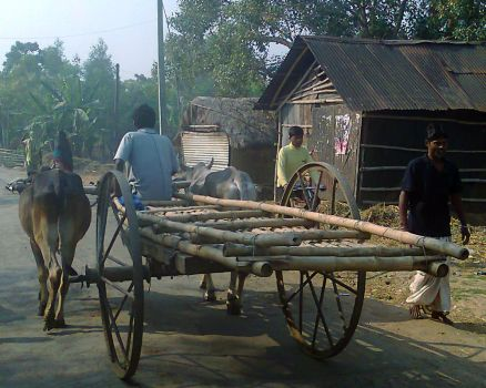 bullock cart by totondesign