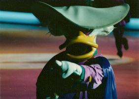 Darkwing Duck LIVE by jlamay