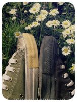 flowers+shoes by inContrast